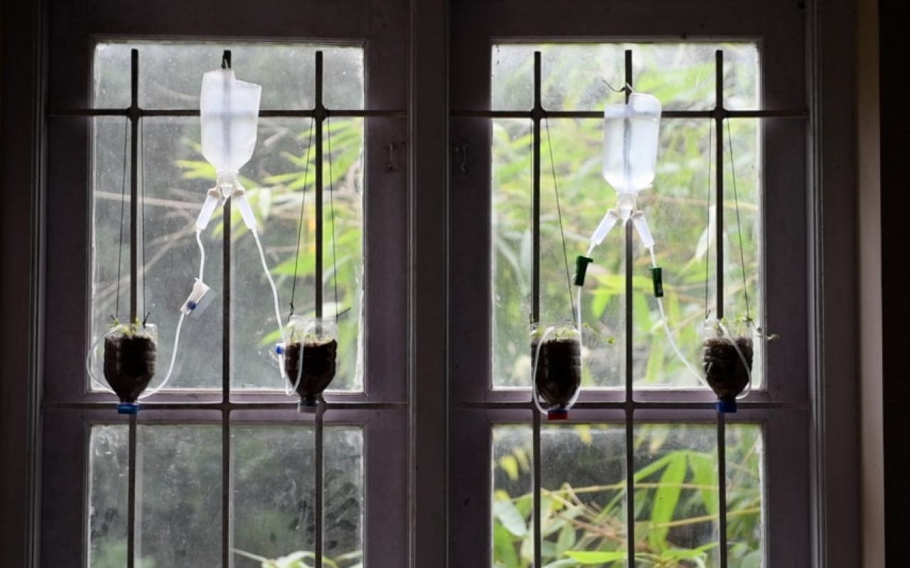 SUB JAYEGA – Die Suche nach dem Palliative-Care-Paradies